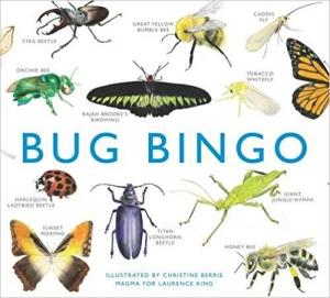 Bug Bingo Game