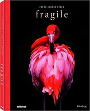 Fragile (Photography)