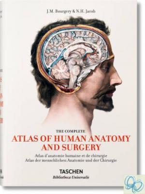 Bourgery. Atlas of Human Anatomy and Surgery