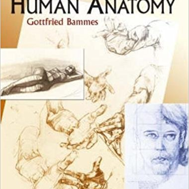 Анатомия человека для художников/The Artist`s Guide to Human Anatomy