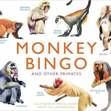 Monkey Bingo: And Other Primates (Magma for Laurence King) Game