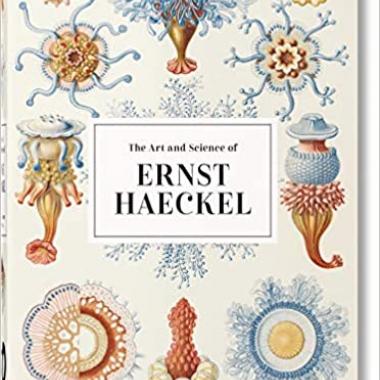 Ernst Haeckel – 40th Anniversary Edition