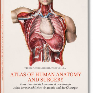 Bourgery. Atlas of Human Anatomy and Surgery,2 vols. in slipcase