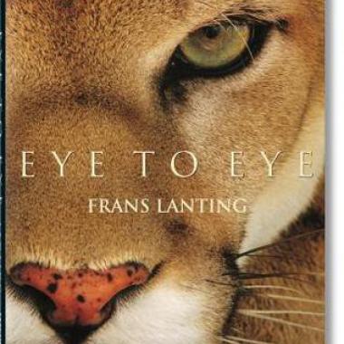 Lanting: Eye to Eye